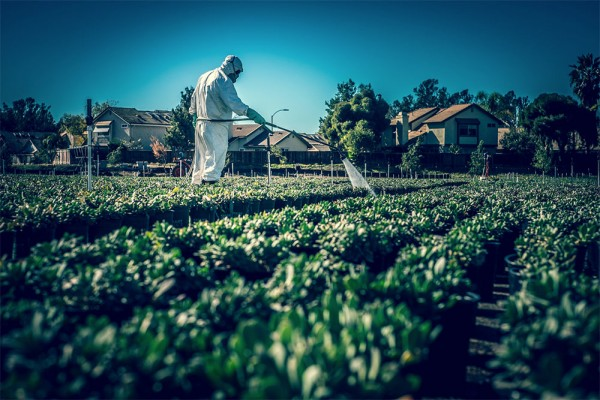 farmer-