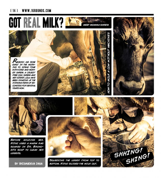 Got-Real-Milk